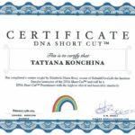 dnk-put-napryamuyu-sertifikat
